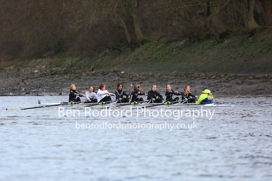 Crew: 215   St Paul's Girls' School (Coats)   WJ16<br /> <br /> Quintin Head 2019<br /> <br /> To purchase this photo, or to see pricing information for Prints and Downloads, click the blue 'Add to Cart' button at the top-right of the page.