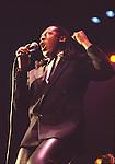 Sylvester 1981....