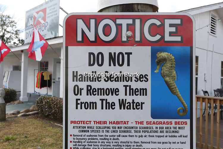 Seahorse conservation sign in fron of a Crystal River, Florida snorkel charter shop.