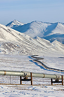 Trans Alaska oil pipeline in Atigun Canyon of the Brooks Range, Arctic, Alaska.