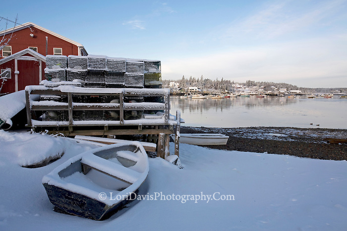 Blue Skiff in Snow