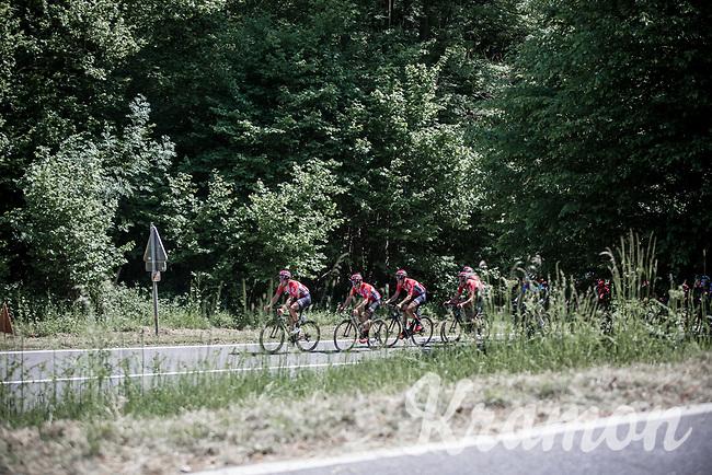 Team Lotto Soudal leads the peloton up the Cote de Maquisard<br /> <br /> Baloise Belgium Tour 2017 (2.HC)<br /> Stage 4: Ans-Ans 167,8km