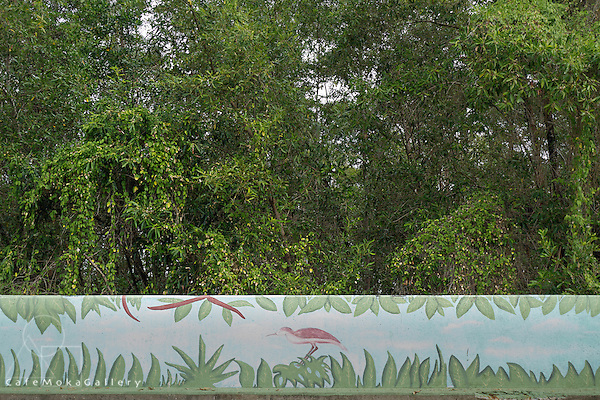 Sea wall painting of a scarlet ibis by local school children at the Goldren Grove Mangrove Conservation Project