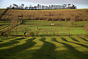 10/12/14<br /> <br /> Morning sunshine casts magical shadows over rolling the pastures of The Derbyshire Dales near Tissington in the  Peak District. The scene may look dramatically different in a few hours as a huge storm dubbed as a 'weather-bomb' is forecast to bring high winds, blizzards and flooding to much of the country.<br /> <br /> ***ANY UK EDITORIAL PRINT USE WILL ATTRACT A MINIMUM FEE OF £130. THIS IS STRICTLY A MINIMUM. USUAL SPACE-RATES WILL APPLY TO IMAGES THAT WOULD NORMALLY ATTRACT A HIGHER FEE . PRICE FOR WEB USE WILL BE NEGOTIATED SEPARATELY***<br /> <br /> <br /> All Rights Reserved - F Stop Press. www.fstoppress.com. Tel: +44 (0)1335 300098