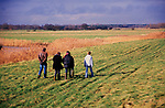 A913W5 Four friends on a country walk through drained marshes near Butley Suffolk England