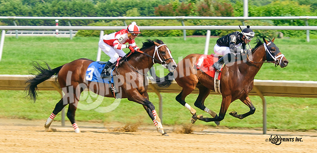 Our Caravan winning at Delaware Park on 7/1/15