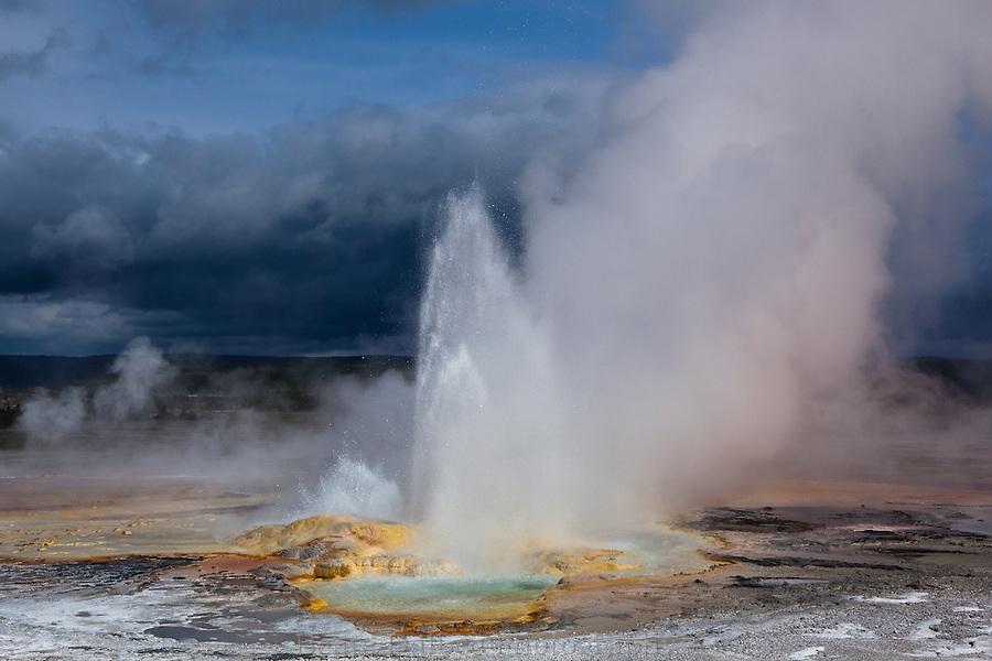 Clepsydra geyser in the lower geyser basin, Yellowstone National Park