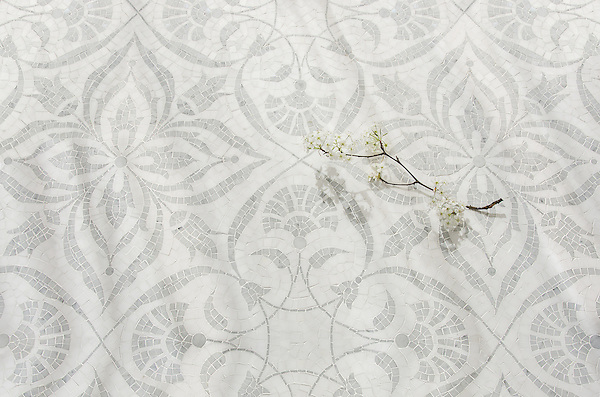 Vashti, a hand-cut stone mosaic, shown in polished Dolomite and Carrara.