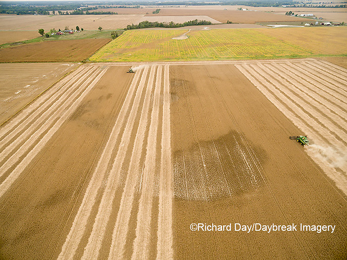 63801-08816 Soybean Harvest, 2 John Deere combines harvesting soybeans - aerial - Marion Co. IL