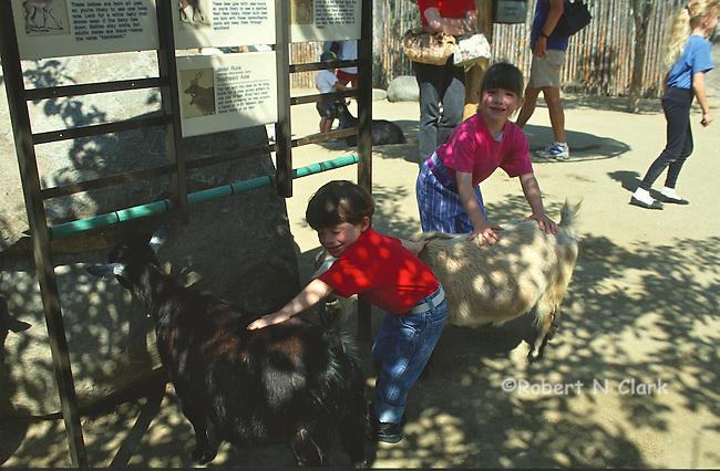 Boy and girl at petting zoo