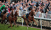 June 10th 2017, Chester Racecourse, Cheshire, England; Chester Races Horse racing; Lot Franklin ridden by Neil Farley leads the field after the first circuit in the final race of the afternoon