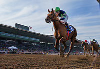 ARCADIA, CA - DECEMBER 26: Giant Expectation #3 with Gary Stevens up wins the San Antonio GII Stakes at Santa Anita Park on December 26, 2017 in Arcadia, California. (Photo by Alex Evers/Eclipse Sportswire/Getty Images)