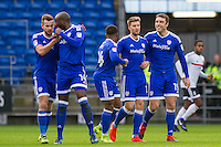 Cardiff City v Fulham - FA Cup 3rd round - 08.01.2017