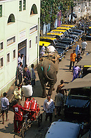 """Asie/Inde/Maharashtra/Bombay: Eléphant dans la rue près de """"Mahalakshmi Dhobi Ghaxi"""" le plus grand lavoir de Bombay"""