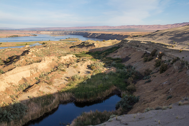 Hanford Reach National Monument, White Bluffs, Wahluke Slope, Columbia River, sloughed bluff, landslide, Columbia Basin, eastern Washington, Washington State, Pacific Northwest, USA, North America,