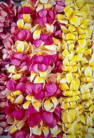 Pink & yellow plumeria leis