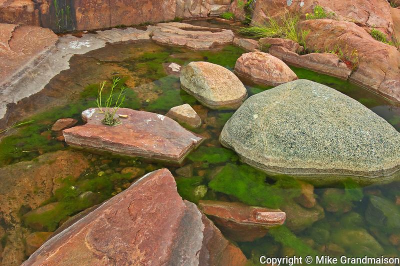 Rocks in pool on Precambrian Shield<br />Killarney Provincial Park<br />Ontario<br />Canada