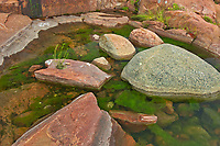 Rocks in pool on Precambrian Shield<br />