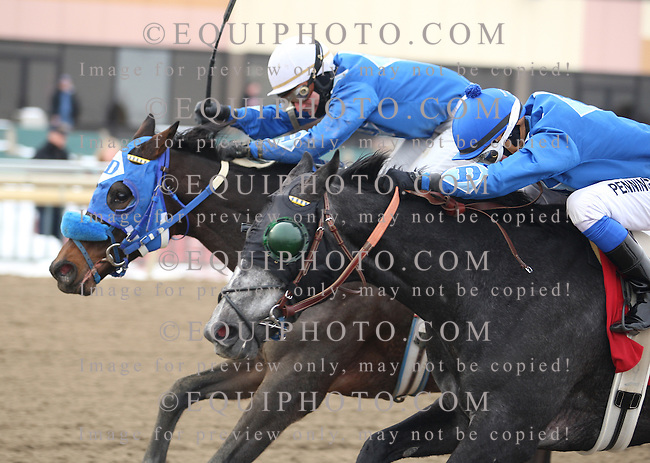 1-2 FINISH FOR TRAINER PHIL SCHOENTHAL.   Elevated #1 (R) with Frankie Pennington riding won the $75,000 Christopher Elser Memorial Stakes at Parx Racing in Bensalem, Pennsylvania February 8, 2014. Second was Stablemate #1a (L) Sonny Inspired Stevica Djuric.  Photo By Bill Denver / EQUI-PHOTO