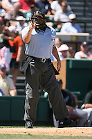 March 21st 2008:  Kevin Causey makes a call during a Spring Training game at Joker Marchant Stadium in Lakeland, FL.  Photo by:  Mike Janes/Four Seam Images