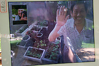 Venice, Italy - 15th Architecture Biennale 2016, &quot;Reporting from the Front&quot;.<br /> Arsenale.<br /> Chinese Pavillion. Home - Communal Garden. Live Chat with people in a Beijing Hutong.