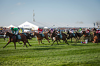 LIVERPOOL - APRIL 14: A blanket of horses, led by #12 Ucello Conti, take a fence at he Randox Health Grand National Steeplechase at Aintree Racecourse in Liverpool, UK (Photo by Sophie Shore/Eclipse Sportswire/Getty Images)