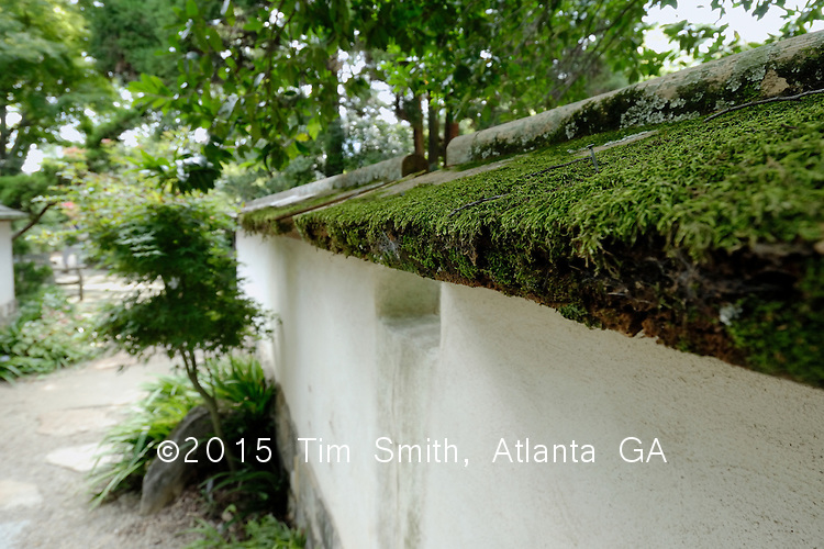 Traditional style white plaster wall with mossy wooden shingles beside a Japanese garden. PSC