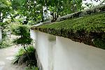Plants + Garden