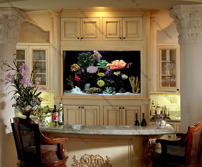 Beautiful Residential Aquarium Installation