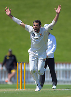 Wellington's Michael Snedden appeals during day three of the Plunket Shield cricket match between the Wellington Firebirds and Canterbury at Basin Reserve in Wellington, New Zealand on Thursday, 31 October 2019. Photo: Dave Lintott / lintottphoto.co.nz
