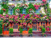Assaf, LANDSCAPES, LANDSCHAFTEN, PAISAJES, photos,+Flowers, Kensington, London, Photography, Pub, The Churchill Arms,Flowers, Kensington, London, Photography, Pub, The Churchil+l Arms+++,GBAFAF20190810,#l#, EVERYDAY