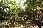 Iles du Salut au large de Kourou.ruines du bagne de l'ile Saint JosephIles du Salut au large de Kourou.Ruines et vestiges de  l''ïle saint Joseph