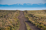 Idaho, Southwestern, Owyhee County, Grandview. A dirt two track road in the Owyhee Desert in spring.