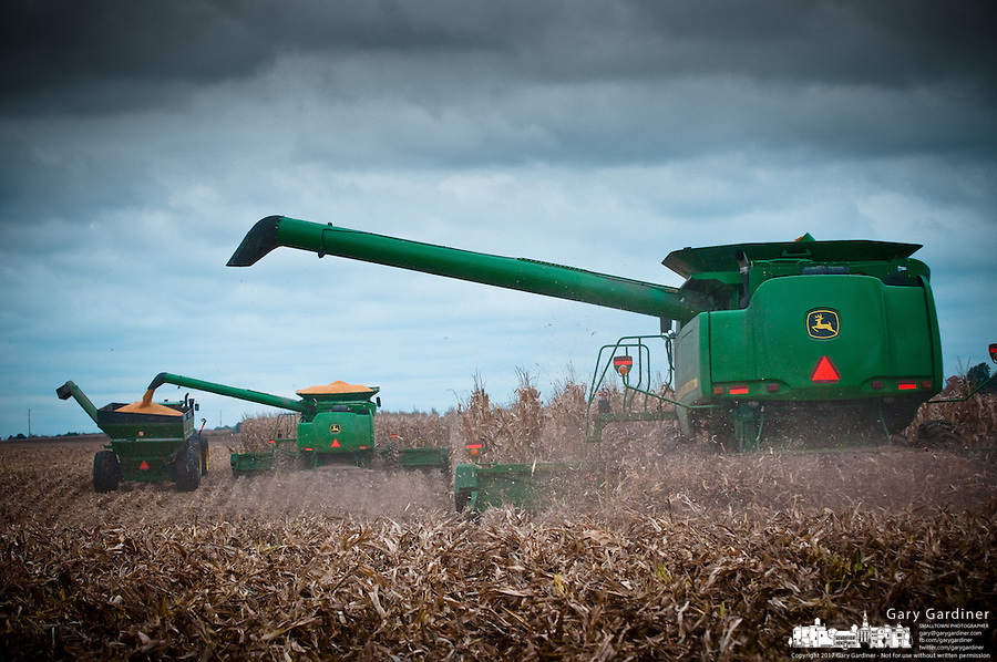 Farmers rush to harvest a field of corn before a fall storm brings rain that will soak the field and crops delaying the harvest.