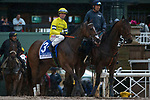 ARCADIA, CA  MARCH 10:  #3 Curlin Road, ridden by Tyler Baze, coming onto the track before the start of the Santa Anita Handicap (Grade l) on March 10, 2018, at Santa Anita Park in Arcadia, CA. (Photo by Casey Phillips/ Eclipse Sportswire/ Getty Images)