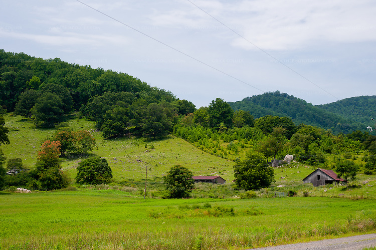A bucolic view of homesteads in the foothills greets the eye as you emerge from the driveway leaving DuCard Vineyards.