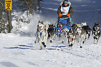 Ellen Halverson 's team run on Long Lake in Willow, Alaska duirng the re-start of the 2011 Iditarod.