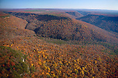 Autumn in Savage Gulf, South Cumberland Mountains