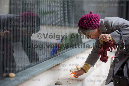Woman lights a candle in front of a wall bearing the names of victims at Budapest's Holocaust Memorial Centre, Hungary on January 27, 2013. ATTILA VOLGYI