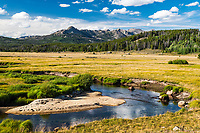 Mountain meadow and the Big Sandy River in the foothills of the Wind River Mountains near Pinedale Wyoming.  The Big Sand isn't very big here.