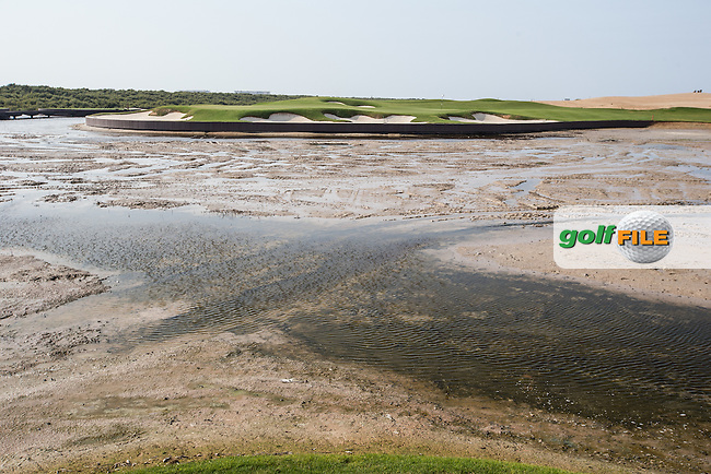 View of the 6th over the pond at Al Zorah Golf Club, Dubai, United Arab Emirates.  26/01/2016. Picture: Golffile | David Lloyd<br /> <br /> All photos usage must carry mandatory copyright credit (&copy; Golffile | David Lloyd)