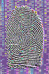 Biomedical illustration of a human fingerprint superimposed on a DNA sequencing gel