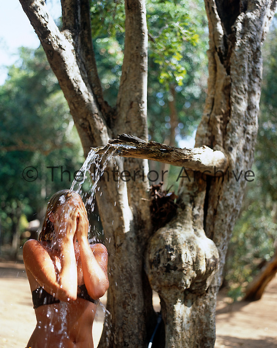 Back to nature; an outdoor shower has been cunningly disguised in an old tree trunk