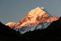 New Zealand, South Island, Canterbury region, Mount Cook National Park: Peak of Mount Cook at sunset | Neuseeland, Suedinsel, Region Canterbury, Mount Cook National Park: Mount Cook Gipfel im Sonnenuntergang