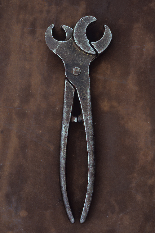 Vintage metal tool with twin heads used for applying tethering rings to noses of bulls or pigs lying closed on metal sheet