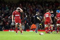Pictured: A dejected Jonathan Davies of Wales (L) after the final whistle Saturday 22 November 2014<br />
