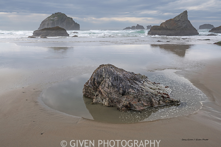 Tidal rock and sea stacks, Oregon