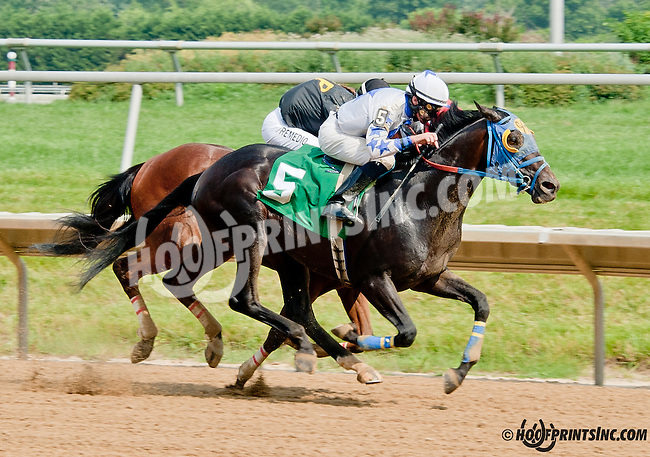 Russian Greek winning at Delaware Park on 6/26/13