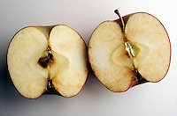 CUT APPLE TURNING BROWN<br /> Results From The Oxidation Of Polypheonal Oxidase<br /> Polypheonal oxidase or tyrosinase is an enzyme common in plant tissues.  When the fruit is sliced, some of the cells are opened, the enzyme has access to oxygen which causes the browning