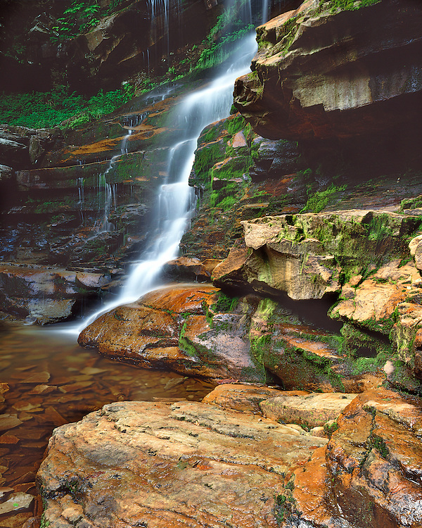 Ganoga Falls in early summer; Ricketts Glen State Park, PA